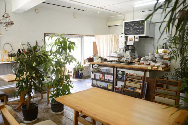 沖繩素食餐廳-中部-dechibica
