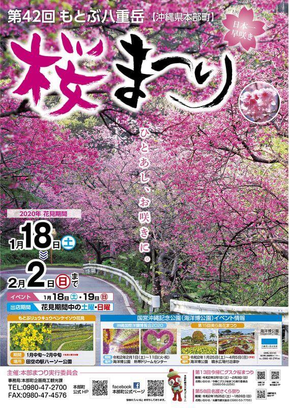 沖繩祭典、活動-本部八重岳櫻花祭