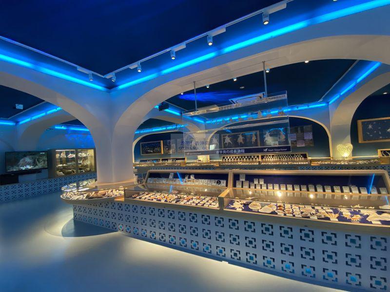 沖繩行程分享-古宇利海洋塔-貝殼博物館